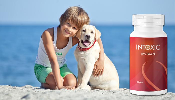 Intoxic: é uma solução segura contra parasitas e vermes!