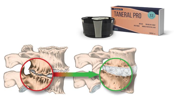 Taneral Pro: faixa magnética de apoio à estabilização da região lombar da coluna vertebral