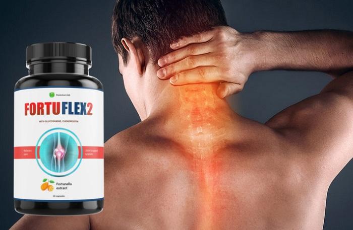 FortuFlex2 para as articulações: restaura a cartilagem e o tecido ósseo!